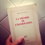 La Théorie de l'Information, de Aurélien Bellanger