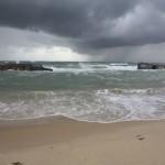 Les blockhaus du Cap Ferret