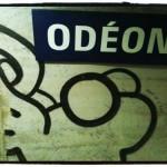 Le chaton d'Odéon