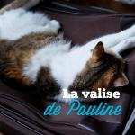 Valise de vacances #3 – Pauline Darley