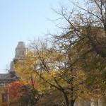 City-guide-philadelphie-35