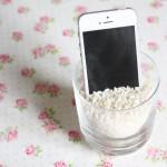 Une histoire de riz et de téléphone
