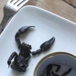 scorpion-a-manger4