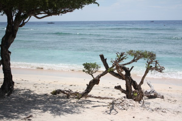 Photos Bali