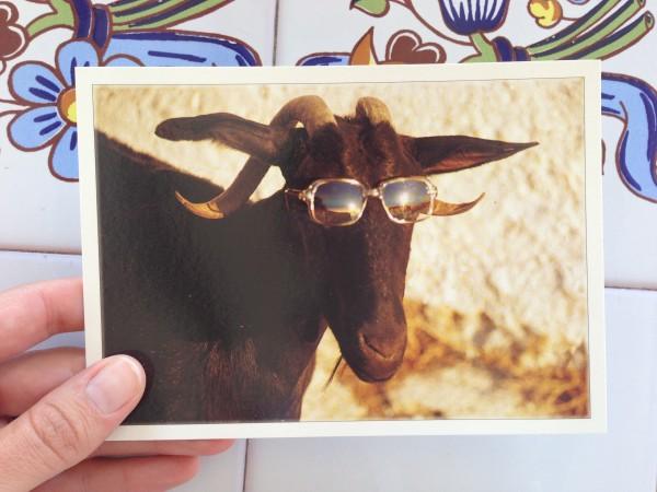 pires cartes postales