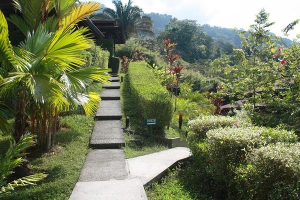 costa-rica-pacifique-2