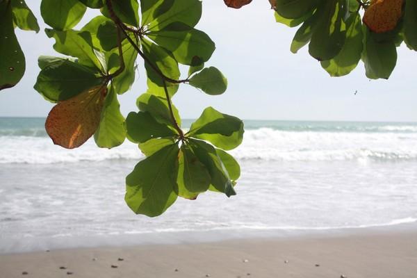 costa-rica-pacifique-21