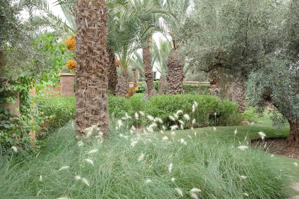 Royal-Palm-Marrakech-10