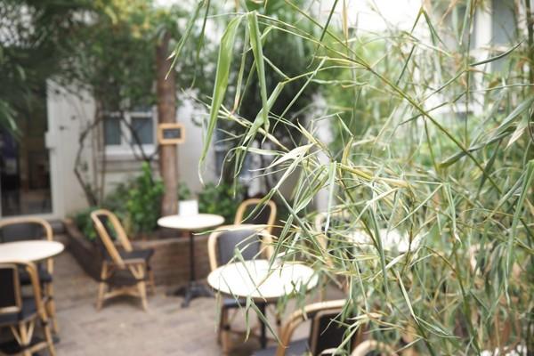 terrasses-cachee-paris